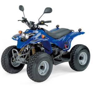 Quad Rex50 blau - pures Fahrvergn�gen 365254