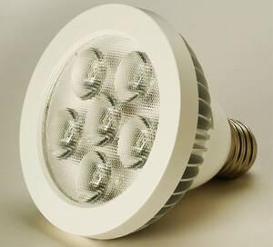Westfalia-Das Spezialversandhaus P30 LED Lampe E27 10 Watt weiss 6000K